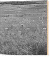 Where Custer Fell, Little Big Horn Wood Print