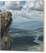 Where Eagles Soar Wood Print