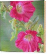 Where Flowers Bloom So Does Hope Wood Print