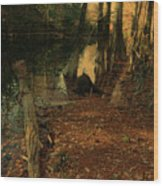 Where Leaves Touch The River Wood Print