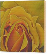 Where The Rose Is Sown Wood Print
