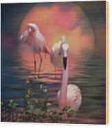 Where The Wild Flamingo Grow Wood Print