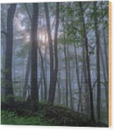 A Tender Light Wood Print