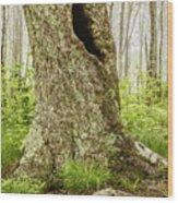 Where Wild Things Play Wood Print