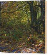 Where's The Trail Wood Print