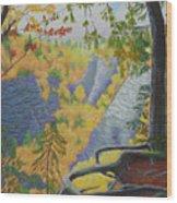 Whetstone Gulf State Park Ny Gorge Wood Print