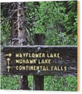 Which Way To Mayflower Lake Wood Print