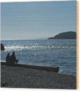 Whidbey Island Beach Wood Print