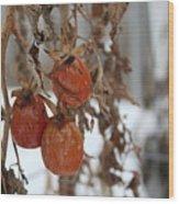 Whimsical Winter Wood Print