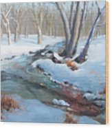 Whippany Brook In Winter Wood Print