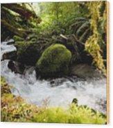 Whiskey Bend Trail  Wood Print