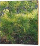 Whispering Pines Wood Print