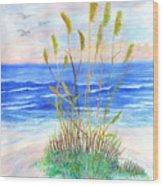 Whispering Sea Oats Wood Print
