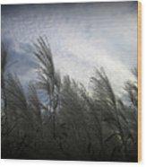Whispers In The Wind Wood Print by Trina Prenzi