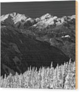 Whistler Winter Scenery Wood Print