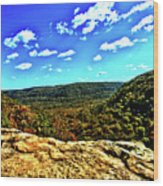 Whitakers Point View Wood Print