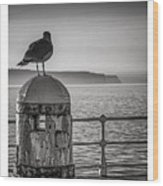 Whitby Pier Wood Print