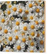 White An Yellow Wood Print