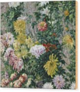 White And Yellow Chrysanthemums Wood Print by Gustave Caillebotte