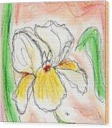 White And Yellow Iris Wood Print
