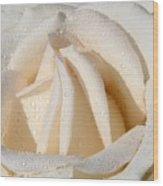 White Angel Rose Wood Print