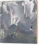 White Azaleas 2 Wood Print