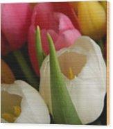 White Balance In Spring Wood Print