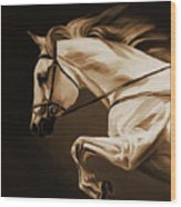 White Beautiful Horse  Wood Print