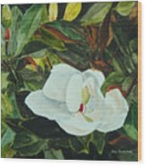 White Beauty Wood Print