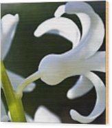 White Bell Wood Print
