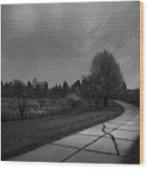 White Bench Horizontal Bw Wood Print