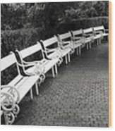 White Benches-  By Linda Wood Woods Wood Print