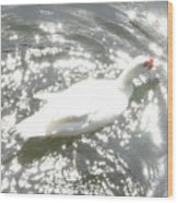 White Bird On Sparkly Water Wood Print