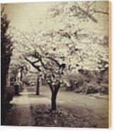 White Bloomers Wood Print