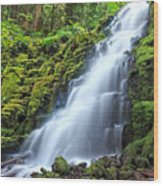 White Branch Falls Wood Print