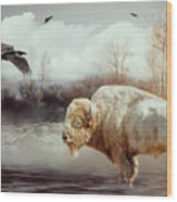 White Buffalo And Raven Wood Print