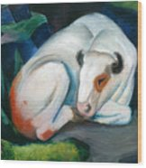 White Bull Resting In The Woods By Franz Marc Wood Print