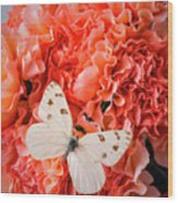 White Butterfly On Pink Carnations Wood Print