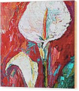 White Calla Lilies Oil Painting Wood Print