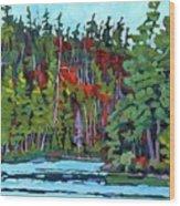 White Cedar Shore Wood Print
