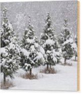 White Christmas At The Christmas Tree Farm Wood Print