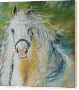 White Cloud The Andalusian Stallion Wood Print