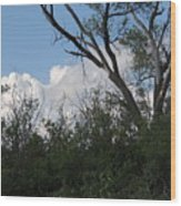 White Clouds With Trees Wood Print