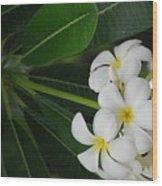 White Cluster Wood Print