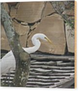 White Crane On Roof Wood Print