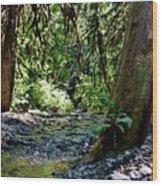White Creek Wood Print