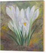 White Crocus Wood Print