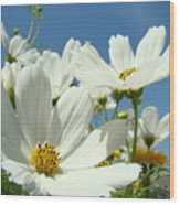 White Daisy Flowers Fine Art Photography Daisies Baslee Troutman Wood Print