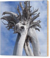 White Desert Tree Wood Print