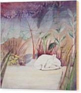 White Doe Dreaming Wood Print